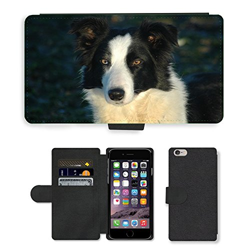 "Just Phone Cases PU Leather Flip Custodia Protettiva Case Cover per // M00128450 Tête de chien Border collie Animaux // Apple iPhone 6 PLUS 5.5"""