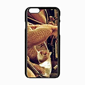iPhone 6 Black Hardshell Case 4.7inch kittens rug couple lying Desin Images Protector Back Cover