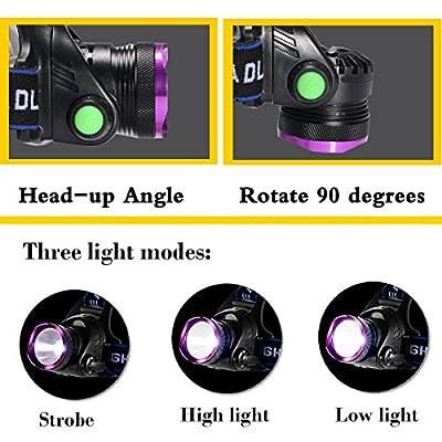 3181 2181 Headlamp