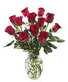 KaBloom Romantic Red Rose Bouquet 12 Red Roses (Long Stem) in Vase Deal
