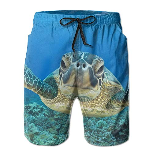 s Casual Shorts Swim Trunks Beach Board Shorts ()