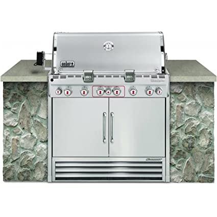 Weber S 660 >> Amazon Com Weber Summit S 660 Lp Grill 2770501 Stainless Steel