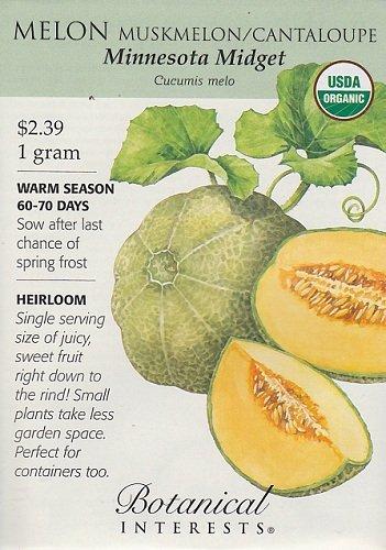 Organic Minnesota Midget Muskmelon/Cantaloupe Seeds - 1 g - Botanical Interests by Hirts: Seed; Vegetable