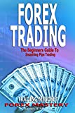img - for Forex Trading: The Beginners Guide To Smashing Pips Trading, Tips to Successful Trading, Trading Mindset, Trading Psychology, Forex Mastery book / textbook / text book