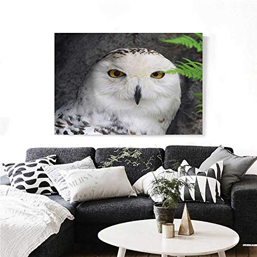 homehot Wizard Modern Canvas Painting Wall Art Pattern White Owl Themed Animal Green Leaves Amber Eyes Gift Witchcraft Print Art Stickers 36