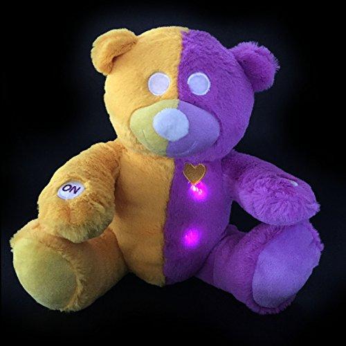 Interactive Learning Talking Glow Educational Teddy Bear - W