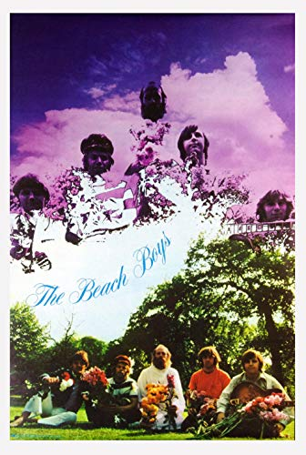 The Beach Boys Poster 1969 The Visual Thing B286