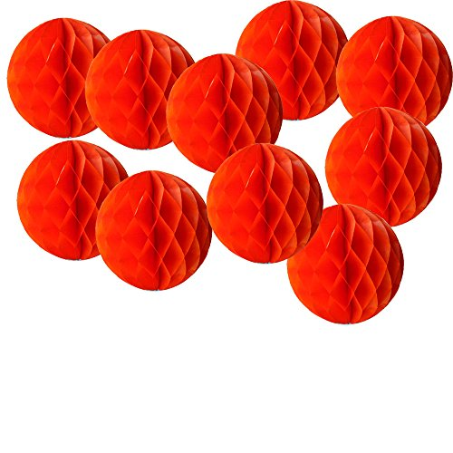 Daily Mall 10pcs 8 inch Red Honeycomb Balls Flower Balls Paper Pom Poms DIY Art Craft Tissue Paper Flower Decorative Flowers Hanging Paper Flower for Home Wedding Baby Shower Birthday Party Decor