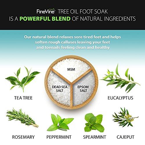 FineVine Tea Tree Oil Foot Soak with Epsom Salt