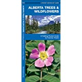 Alberta Trees & Wildflowers: A Folding Pocket Guide to Familiar Species