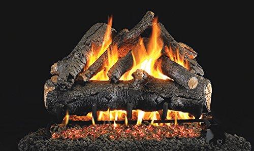 Real Fyre 24-inch American Oak Vented Gas Logs Bundled with G4 Burner Kit (Natural Gas) - Match ()