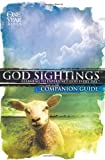 God Sightings: the One Year Companion Guide, Group Publishing, Inc., 0764439251