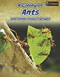 A Colony of Ants, Anna Claybourne, 1432964879