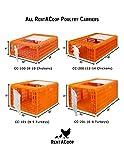 RentACoop Carrier Crate - 4