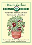"Heirloom Organic Container Tomatoes""Tasmanian Chocolate"""