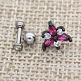 Excepro Ear Labret Piercing G23 Titanium PVD Plated White Horseshoe CZ Earring Barbell Gemstone Body Jewelry Cartilage Studs Earrings