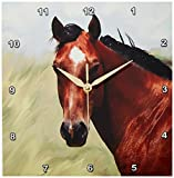 Cheap 3dRose LLC Paint Horse Portrait Wall Clock, 10 by 10-Inch