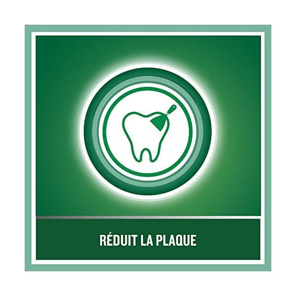 Listerine Bain de Bouche Protection Dents et Gencives, 250ml – Lot de 2