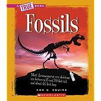 Fossils (True Books)
