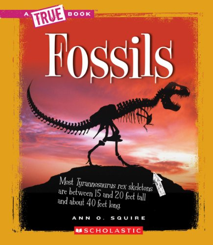 Fossils (True Books: Earth Science (Paperback)) [Ann O Squire] (Tapa Blanda)