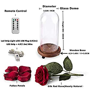Beauty and The Beast Enchanted Rose, Artificial Red Silk Rose Lamp with LED String Lights, Fallen Petals, Wooden Base in A Glass Dome, Best Gift for Valentine's Day, Christmas, Wedding, Anniversary 2