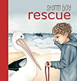 Best Board Books For Boys - Storm Boy Rescue - Board Book Review