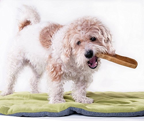Downtown-Pet-Supply-Himalayan-Yak-Dog-Chew-5-lb