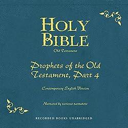 Holy Bible, Volume 17