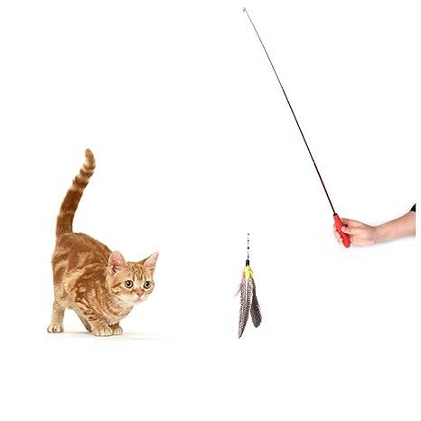 venmo Kitten Cat da varita de plumas de pájaro juguetes para gatos, enscalable con pluma
