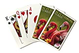 St. Petersburg, Florida - Flamingos (Playing Card Deck - 52 Card Poker Size with Jokers)