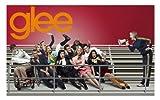 Glee - Cast TV Show Art Print - TV Show Memorabilia - 11x17 Poster, Vibrant Color, Features Matthew Morrison, Jane Lynch, Jayma Mays, Jessalyn Gilsig, Dianna Agron.