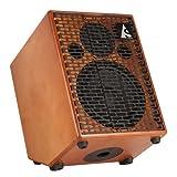 Godin Guitars 039104 75-Watt Acoustic Guitar Amplifier, Wood