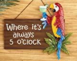 Always 5 O'clock Someplace Hanging Wall Sign Colorful Macaw Parrot Cocktail Tropical Home Accent Plaque Decor