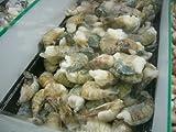 Massive Grilling Shrimp, 2 LB Bag, Farm Raised
