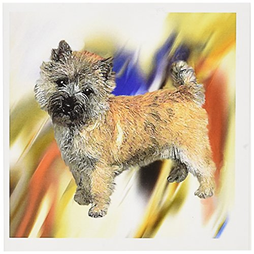 3dRose Cairn Terrier - Greeting Cards, 6 x 6 inches, set of 12 - Note Terrier Cairn Cards