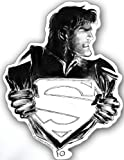 Best Licenses Products Man Stickers - Licenses Products DC Comics Superman Changing Sticker Review
