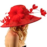 Demure Dome Sinamy Butterfly Floral Feathers Derby Floppy Dress Wide Hat Red
