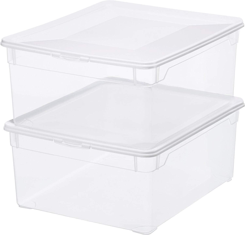 Sundis Rotho 6334200096 - Caja de almacenamiento con tapa, color transparente, plástico, paquete 2