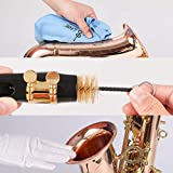 10-in-1 Saxophone Cleaning Care kit for Alto Tenor