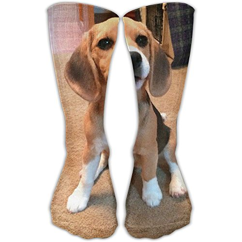 Adorable Beagle Unisex Novelty Comforable Crew Socks Funny Casual Cotton Crew Socks One Size Picture