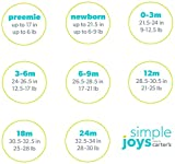 Simple Joys by Carter's Baby Girls 4-Piece Little