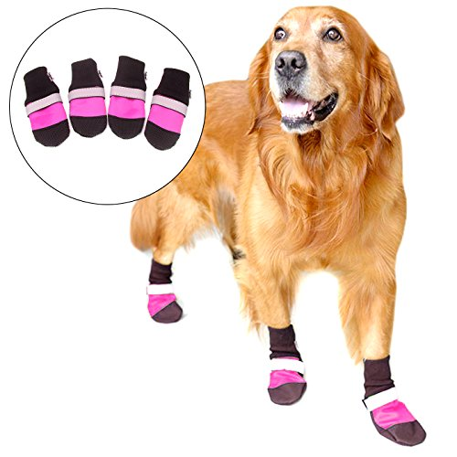 Alfie Pet by Petoga Couture - Dorian All Weather Set of 4 Dog Boots - Color: Pink, Size: XL (Designer Dog Boots)