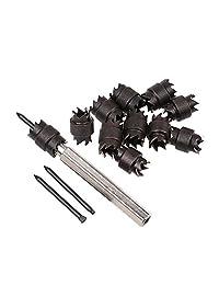 Bewant - Juego de cuchillas de recambio para cortador de fuego, 13 piezas, 3 8 pulgadas