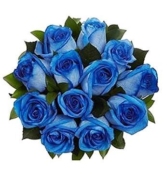 amazon com 100 real fresh blue roses exotic and amazing