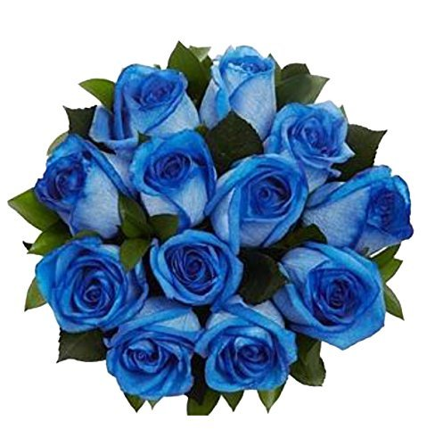 100 Real Fresh Blue Roses | Exotic and amazing by FarmDirect