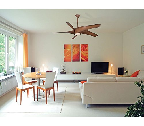 Minka aire f905 sl artemis xl5 62 ceiling fan silver amazon aloadofball Images