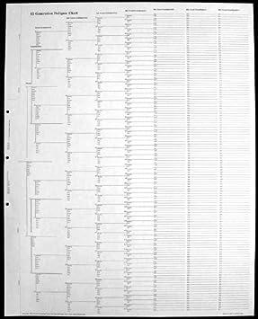 Amazon.com : 12 Generation Pedigree Chart - 10 pack : Chart Paper ...