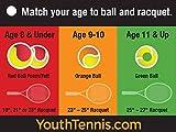 Penn QST 36 Felt Tennis Ball in Polybag