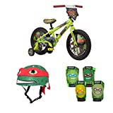 Teenage Mutant Ninja Turtles 16'' Boys' Bike with matching TMNT Raphael Helmet, TMNT Pads and Gloves, Bundle