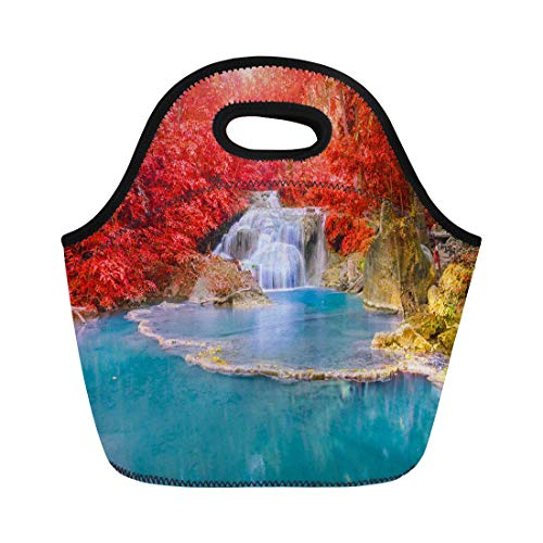Semtomn Neoprene Lunch Tote Bag Wonderful Waterfall and Red Leaf in Deep Forest at Reusable Cooler Bags Insulated Thermal Picnic Handbag for Travel,School,Outdoors, Work